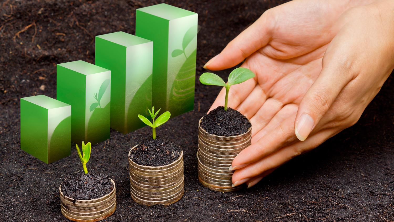 gestión del desarrollo sostenible